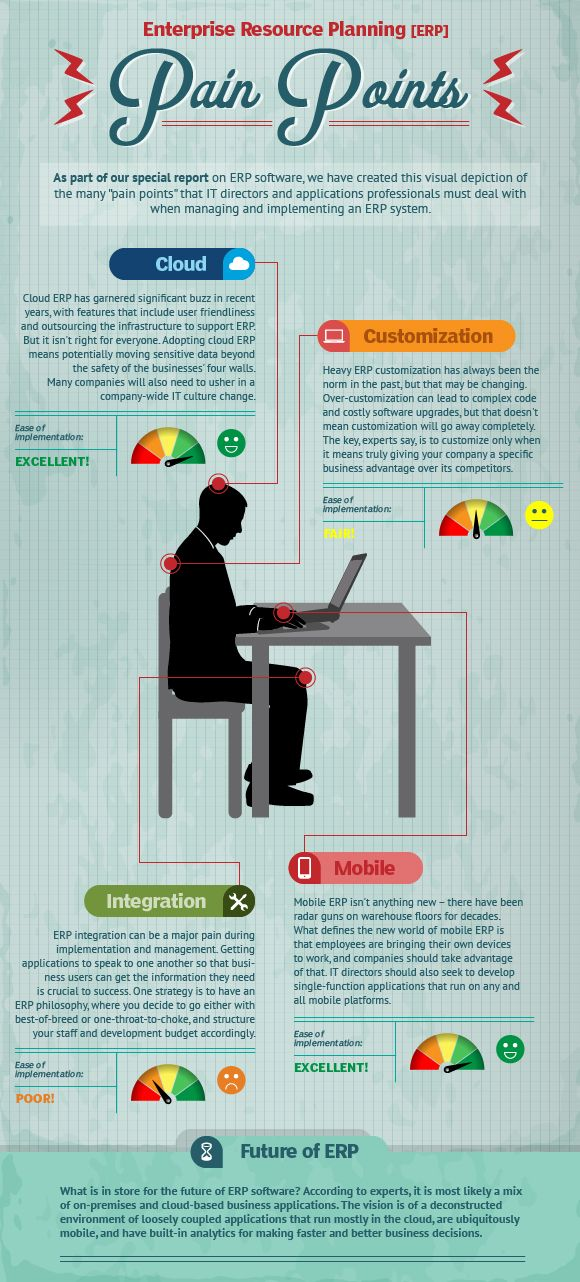 ERP infographic on various ERP implementation pain points, including customization, integration and mobile functionality.