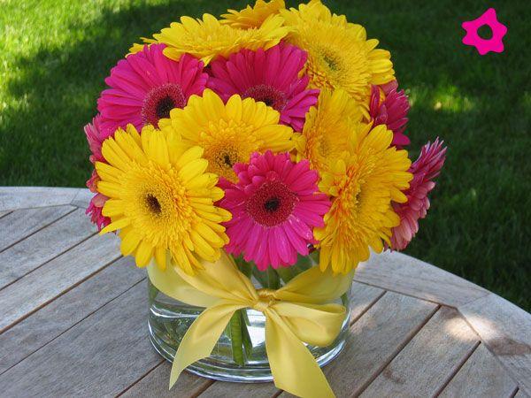 Gerberas como flores de boda