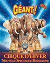 Cirque D'Hiver Bouglione - Paris - Salle De Spectacle | BilletReduc.com
