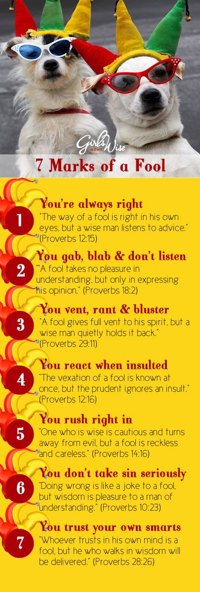 """7 Marks of a Fool 