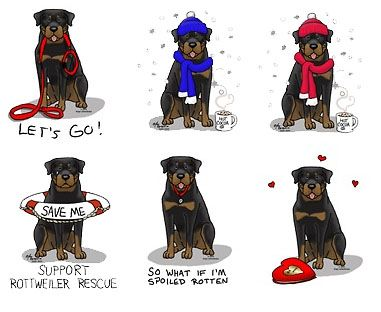 Image detail for -rottweiler designs by angi these lovely rottweiler pictures are ...