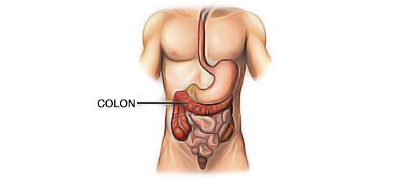 Nettoyage naturel du colon : Les remèdes de grand-mère pour nettoyer naturellement le côlon. Juste avant le printemps c'est le moment idéal.