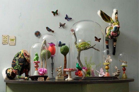 Un cabinet de curiosités animalier                                                                                                                                                                                 Plus
