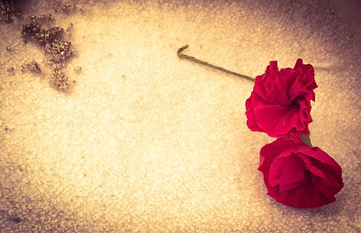 - LIA BOSCH - - ATHANATOS - Details - - Spazio Rossana Orlandi - - www.liabosch.com @lia__bosch . #liabosch #athanatos #details #liaboschathanatos #spaziorossanaorlandi @Rossana Orlandi #milandesignweek2017 #mdw2017 #milanodesignweek #fuorisalone2017 #fuorisalone #design #art #maxmaglierie #etabetaprforliabosch #mtpisani_etabetapr @mtpisani_etabetapr