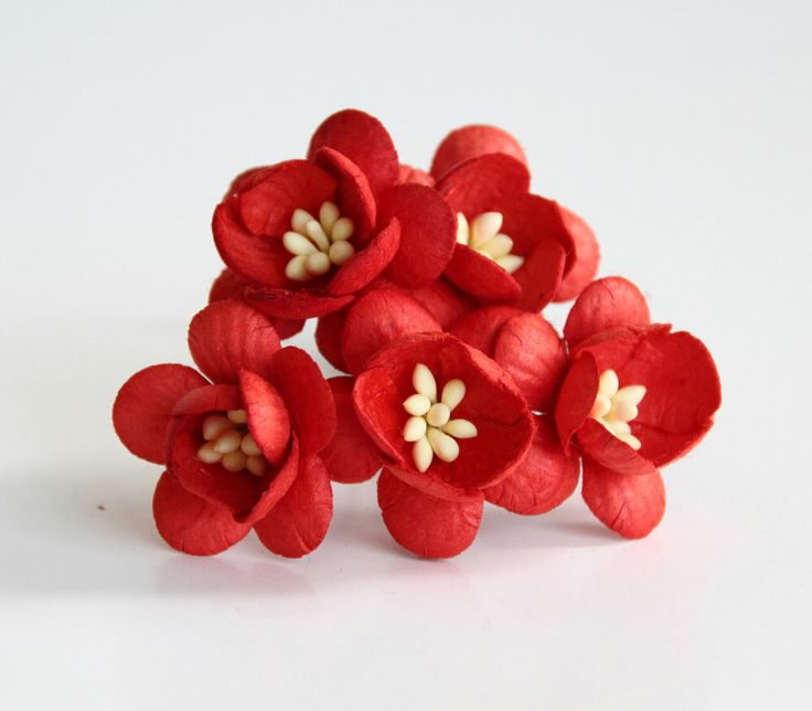50 pcs - Red Cherry blossom paper flowers - Wholesale pack by swettacraftsuplies on Etsy https://www.etsy.com/listing/211490398/50-pcs-red-cherry-blossom-paper-flowers