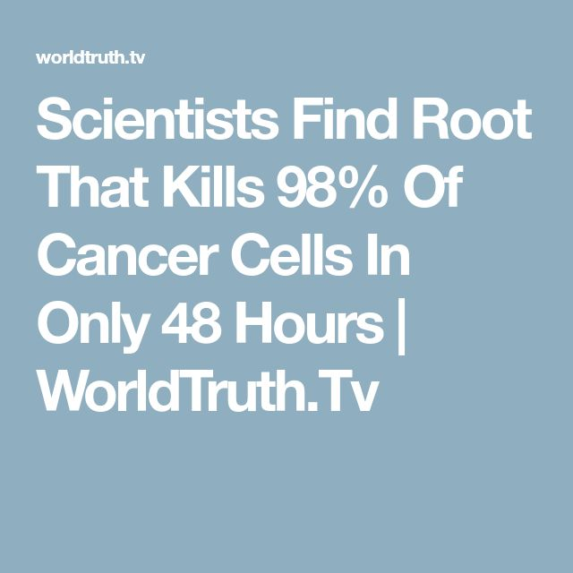 Scientists Find Root That Kills 98% Of Cancer Cells In Only 48 Hours | WorldTruth.Tv
