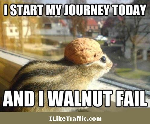 I walnut fail