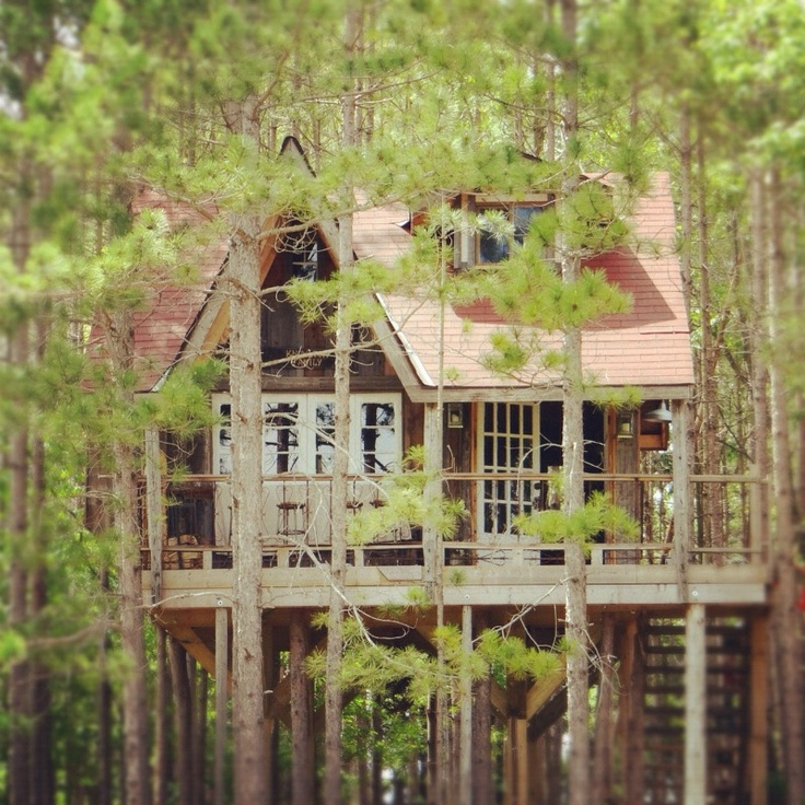 Missing the #treehouse right now. It is under SNOW. eeeek.