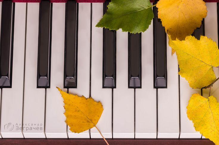 Предметная фотография музыкальных инструментов (музыка, фортепиано, осень, листья). Product photography of music instruments (piano, autumn, leafs).