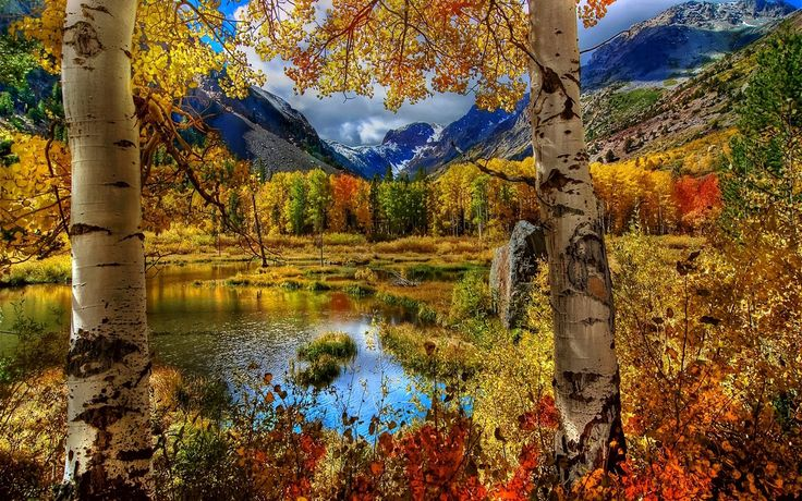 Beautiful Nature Fall Hd Wallpapers : Wallpapers13.com