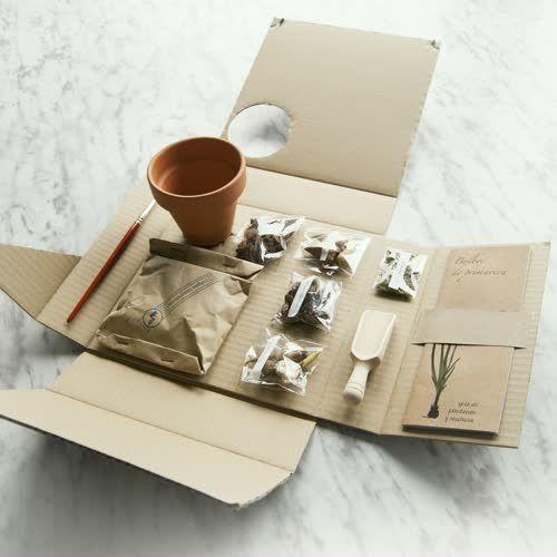 Las 25 mejores ideas sobre regalos corporativos en - Regalos originales para casa ...