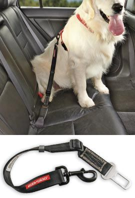 Seat Belt Leash, Pet Car Restraint, Seat Belt for Dogs - I use one of these! Very easy to use & keeps the doggies safe!