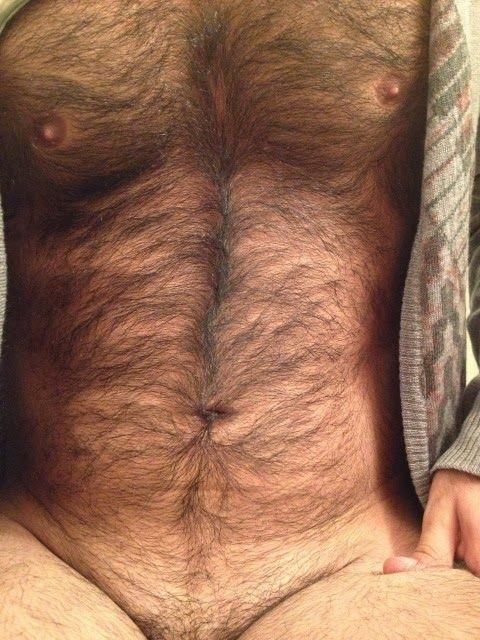 Treasure Chests hairy chest arms legs men beard scruff