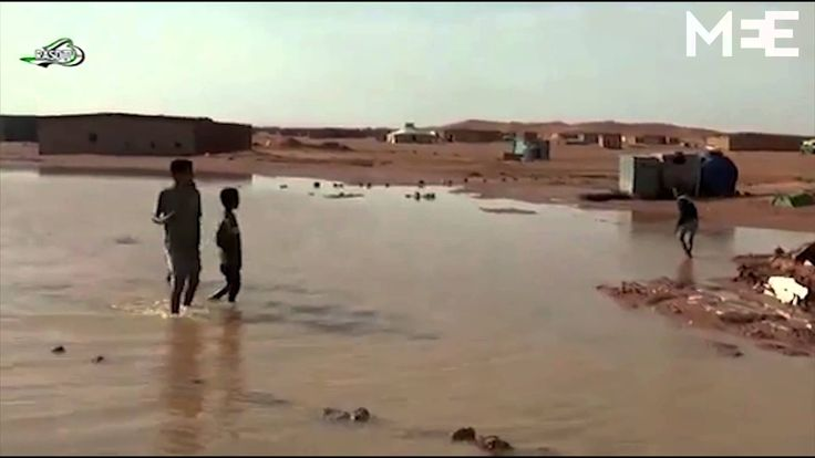 Western  Sahara floods leave 25,000 refugees in urgent need of care