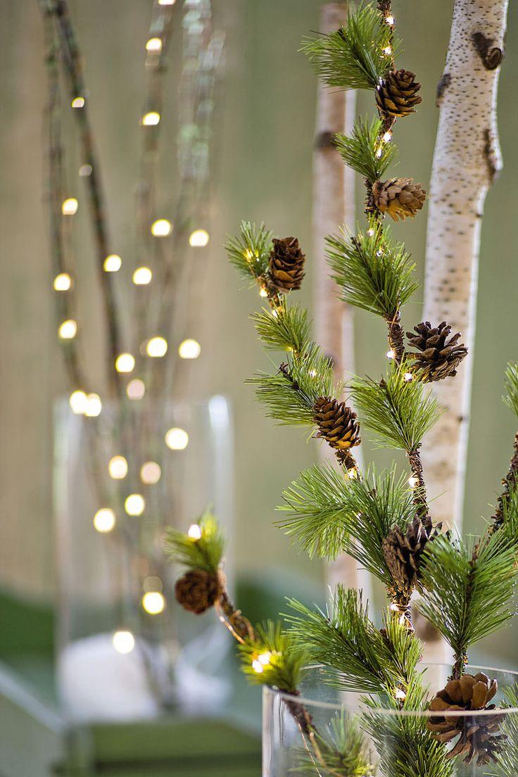 Micro Dot Lights - Battery LED Christmas Lights | Gardener's Supply