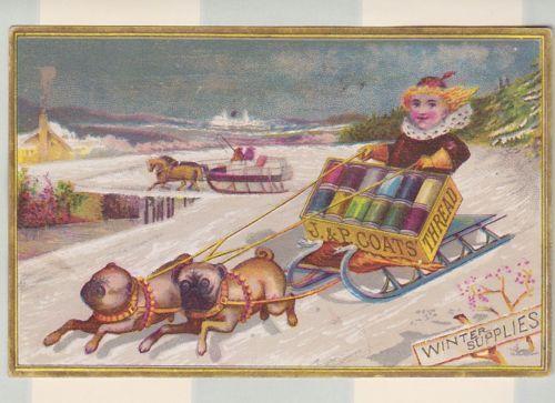 Rare-Victorian-Trade-Card-Winter-Supplies-JP-Coats-Thread-Sewing-Pug-Dogs