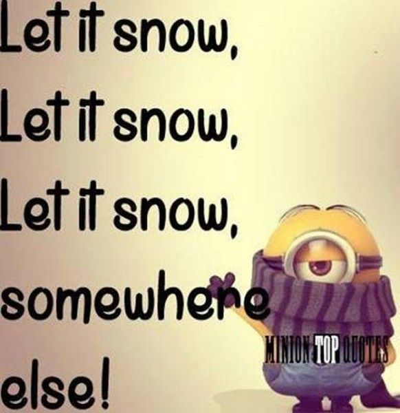 LOL!  The sentiment of all of us who started out in a warm state and ended up in Minnesota! Amusing Minions pictures – 10 pics