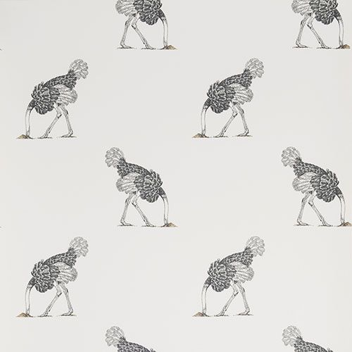 Fun and funky - Ostrich Small Pencil on Bone Collection - 256 Best Wallpapers Images On Pinterest Wallpaper, Wall Murals