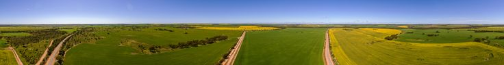 Fields of Gold - 360 Panorama