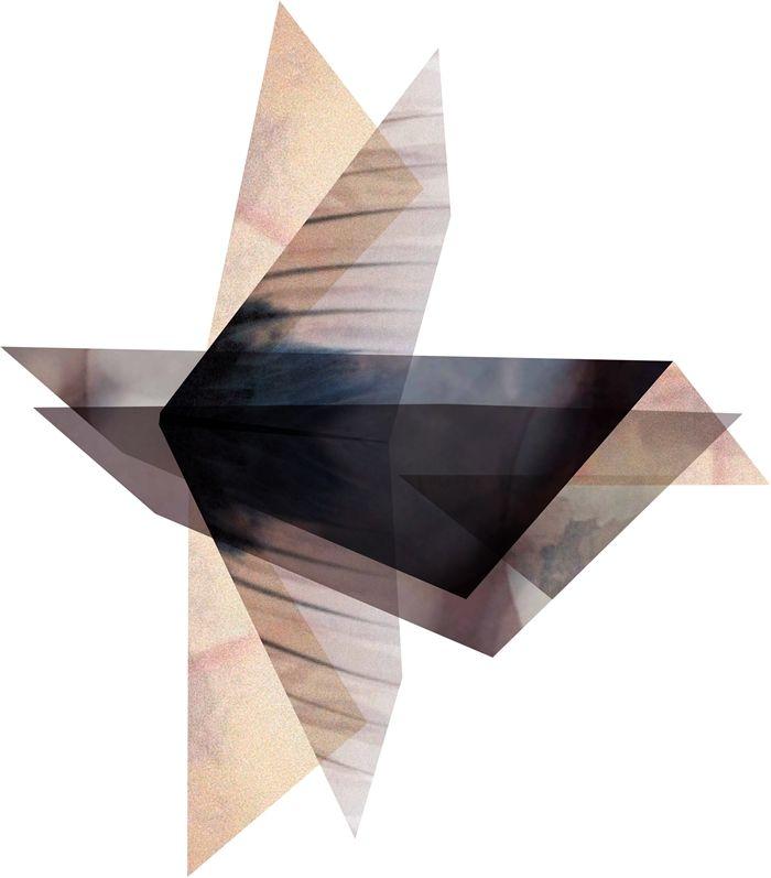 Mintstudio poster - Elements of bird nr. 2