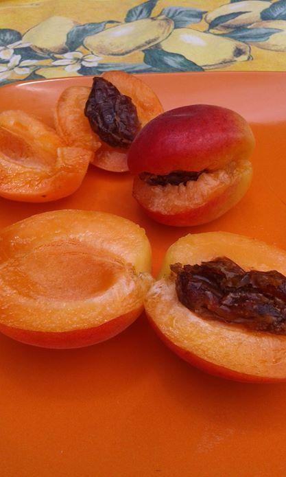 Albicocche ripiene di datteri - il sogno di una notte, è diventato la ricetta del giorno dopo  /  Apricots filled with dates.  Last night's dream became this morning's reality  :-)