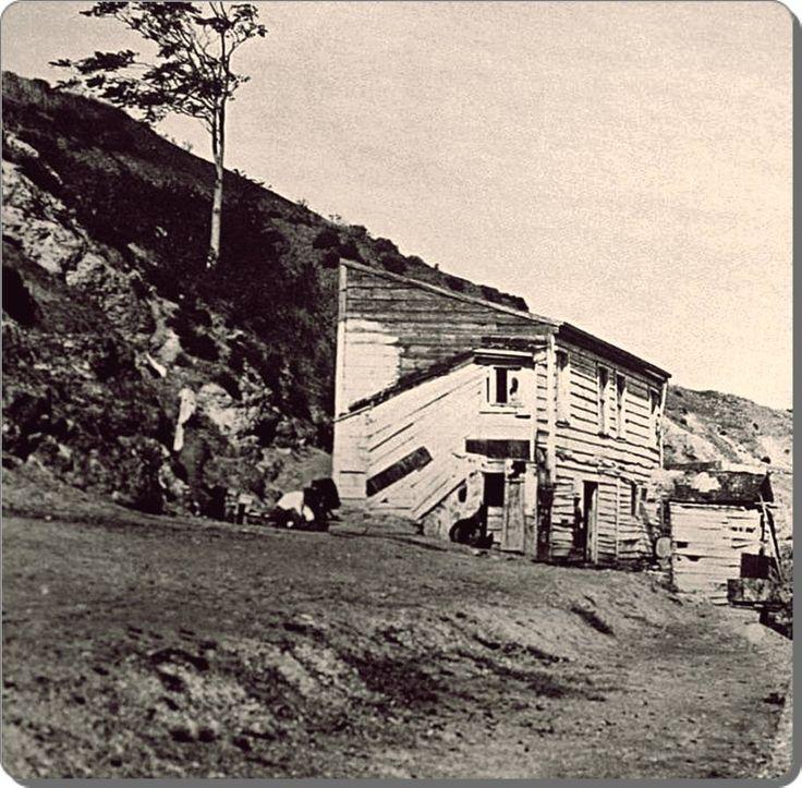 Heybeliada, Terki dünya - 1925