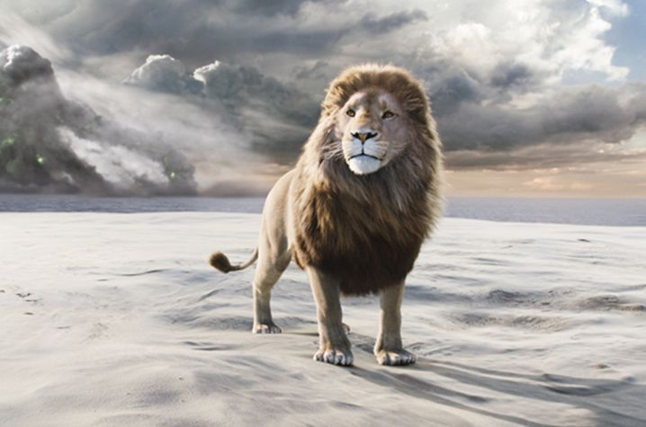 Aslan The Lion From Narnia | Aslan le grand lion