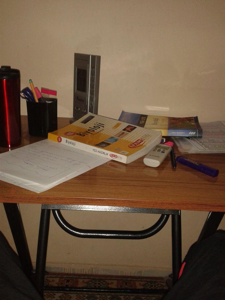 ı am studying