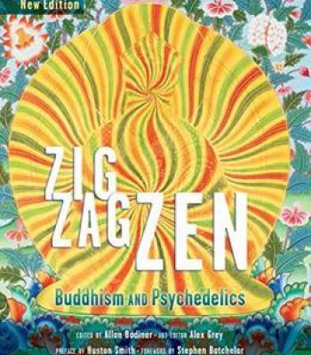 meditation in action chogyam trungpa pdf