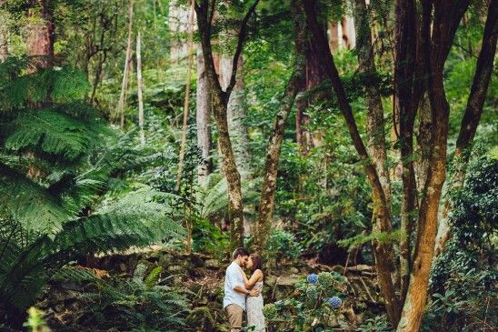 Emgagement Photography shoot by Sigmundmarques Photography.   #forest #AlfredNicholasGardens #Melbourne