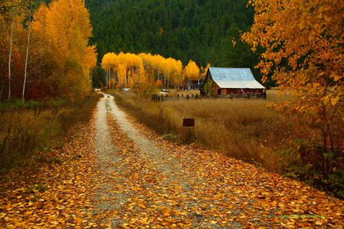 Fall Color and Homestead Along Senic US Highway 2 in Washington