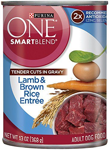 Purina ONE SmartBlend Tender Cuts in Gravy Wet Dog Food- 12-3 oz. Cans => Can't believe it's available, see it now : Dog food types