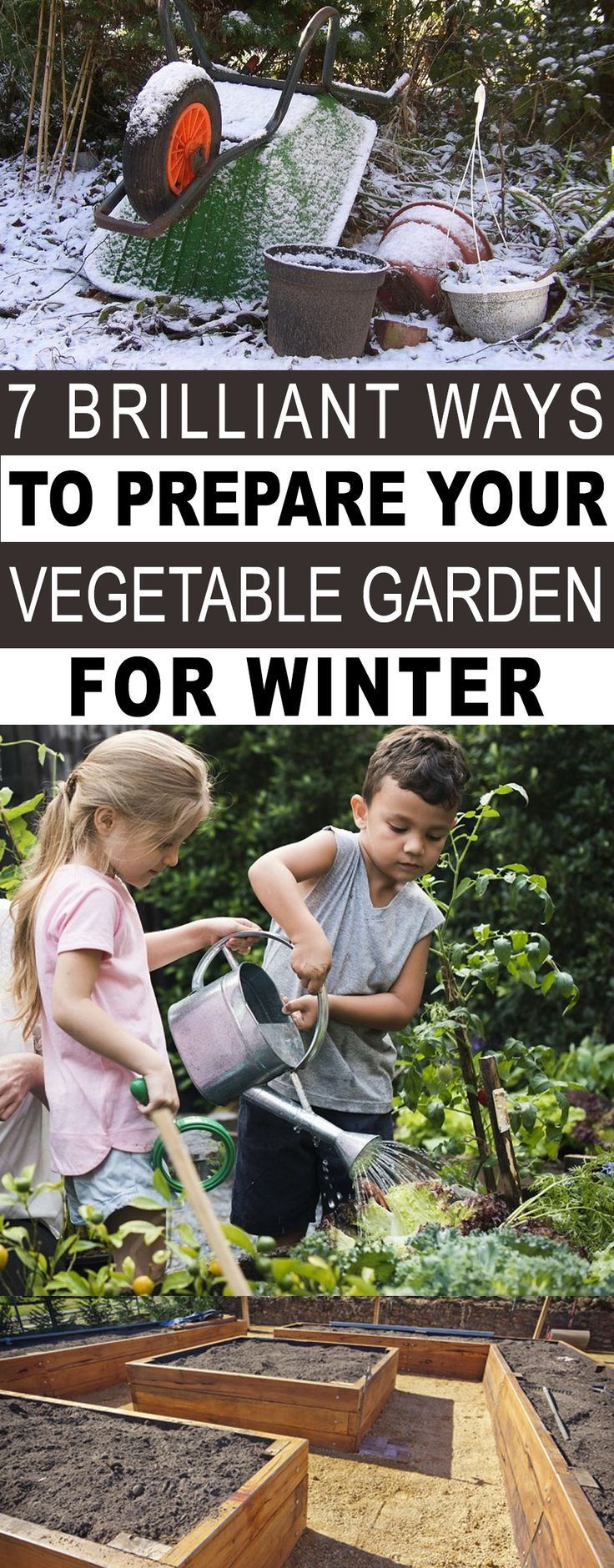 7 Brilliant Tips to Prepare Your Vegetable Garden for Winter  – Home and Garden
