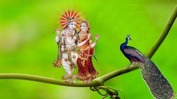 1000 Radha Krishna Hd Images Wallpaper Pics Photos Lord Krishna Hd Wallpaper Krishna Wallpaper Krishna