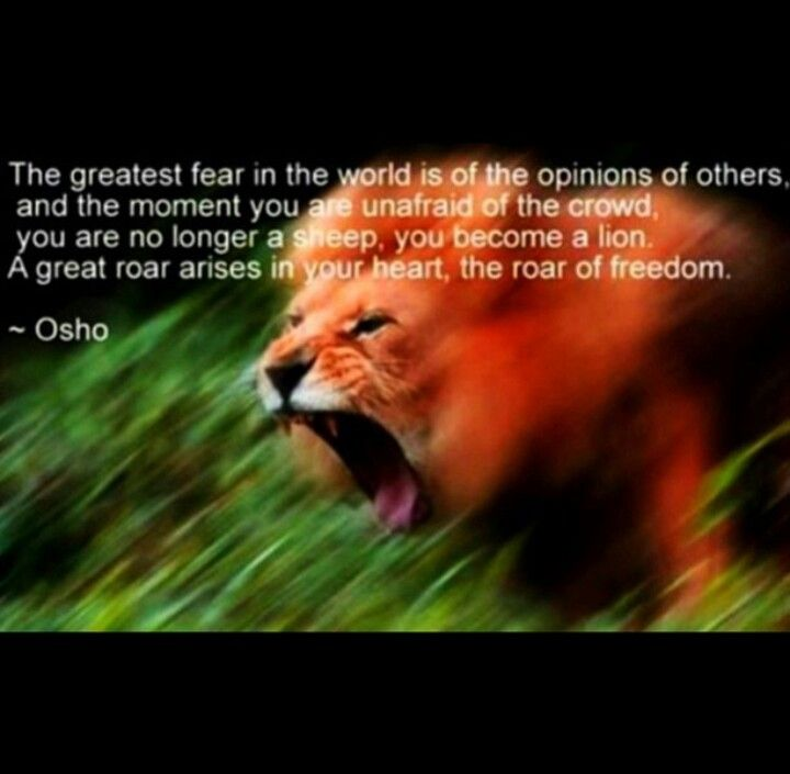 Strength Courage Quotes Best Quotes Of Life Quotes