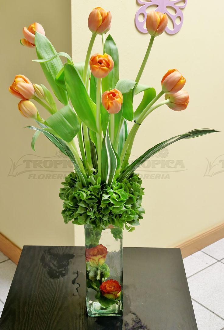 Arreglo de tulipanes @ Tropica Floreria