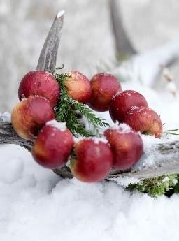 Apple Wreath.