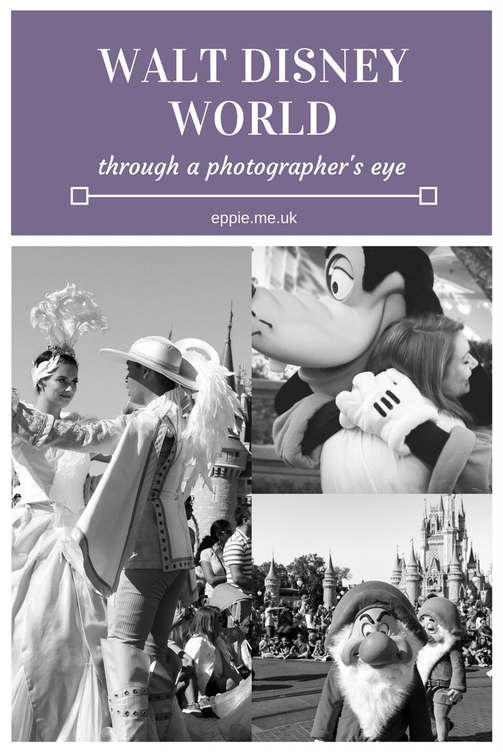 A photo diary of Walt Disney World Resort parks and hotels through a photographer's eye including Magic Kingdom, Epcot, Animal Kingdom and Hollywood Studios. Character meets, parades, shows and more.