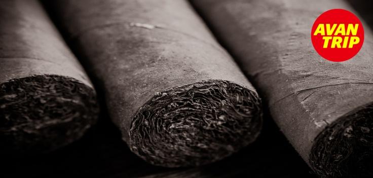 Los productos por excelencia que podemos comprar en Cuba son el ron y los puros, que están considerados los mejores del mundo y se pueden adquirir a muy buen precio.    Necesitas cuatro de los cinco sentidos a la hora de elegir un Habano: agradable a la vista, la sensación al tacto, el aroma y el sabor. Muchos piensan que el sonido de un puro al palparlo cerca de sus oídos, también es importante.    #Cuba #Viaje #Avantrip