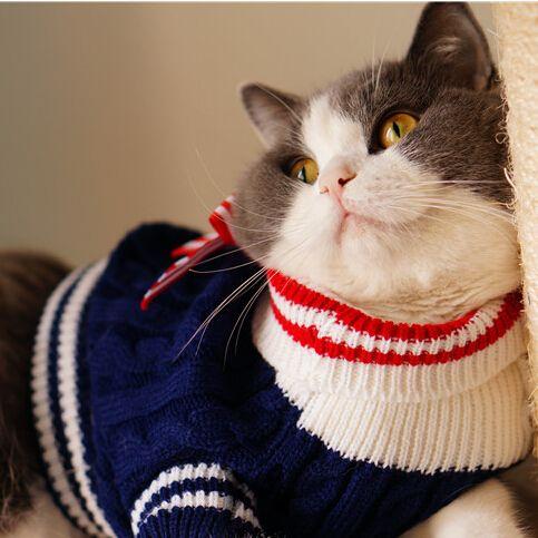 Теплая зима осень домашняя кошка свитер темно-стиль щенок перемычка трикотажные свитера пальто одежды собаки для кошки домашнее животное