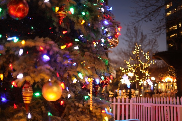 Christmas in Gore Park