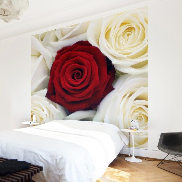 Unique  Vliestapete Premium Blumentapete Bed of Roses Fototapete Quadrat Hochzeit Heirat