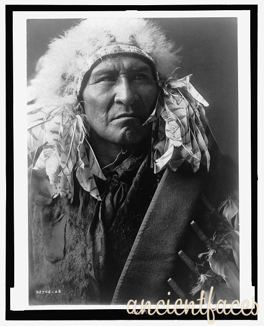 Montana Native Plants: 17 Best Images About Crow Tribe On Pinterest
