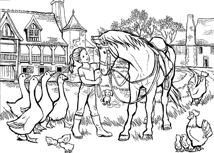coloring girl with horse and other animals lot of details from the gallery kids animals
