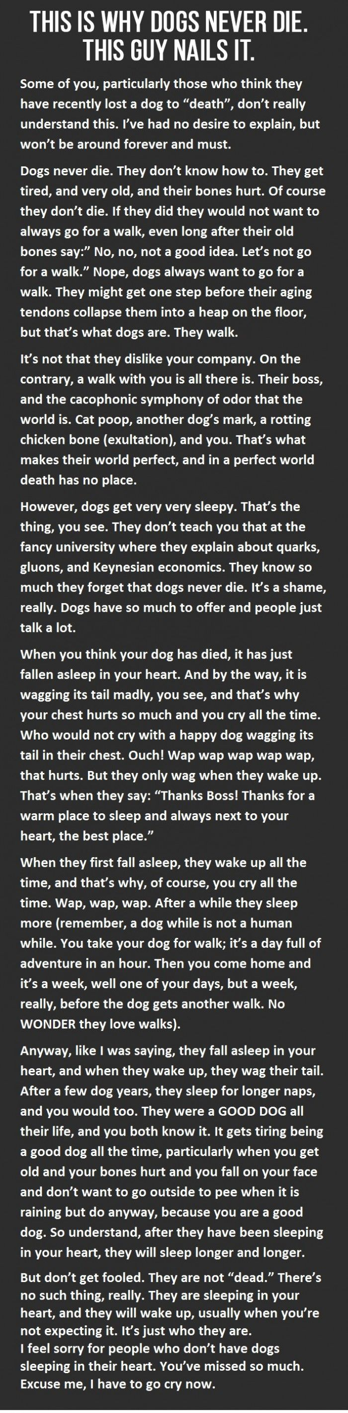 dogs never die... a theory.