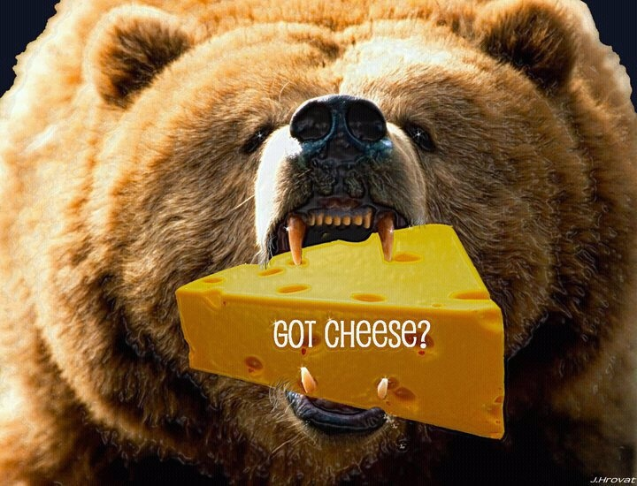 Da Bears are HUNGRY!!!