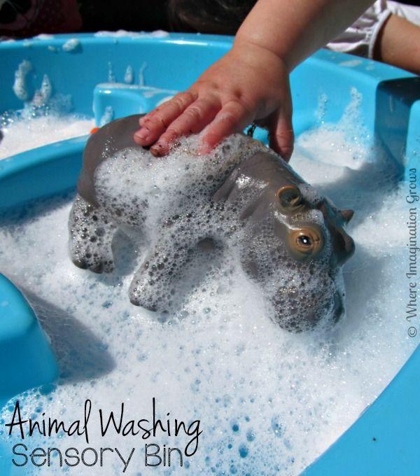 Animal Washing Sensory Play for Toddlers