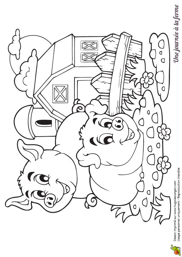 274 best coloriages animaux de la ferme images on - Coloriage ferme ...