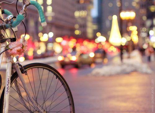 Bicycle & Street