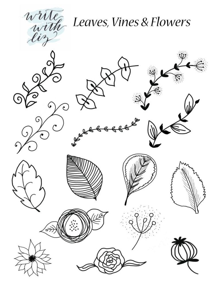 FREE PRINTABLE! Leaf Flower and Vine Accents to Add to Your Hand Lettered Artwork. | Write With Liz for DawnNicoleDesigns.com